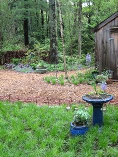 Long_view_idea_garden_3