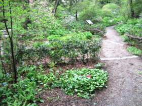Woodland_parterre_2