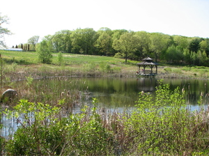 21pond_long_view_2