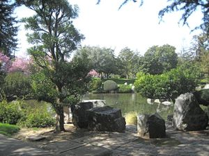 Lower_koi_pond_2