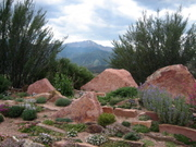 Xeriscape_3_rocks_and_peak