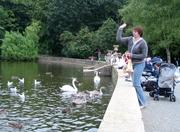 Culzean_swan_pond