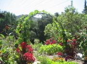 Des_entry_garden_1