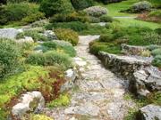 Threaverock_garden